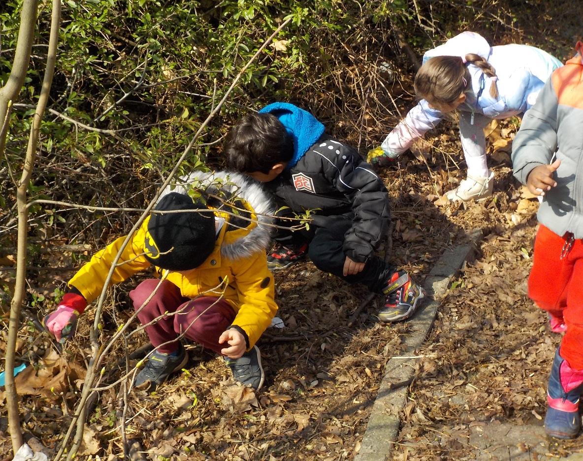 In Büschen versteckt sich leider oft auch Müll, den die Kita-Kinder aufsammelten.
